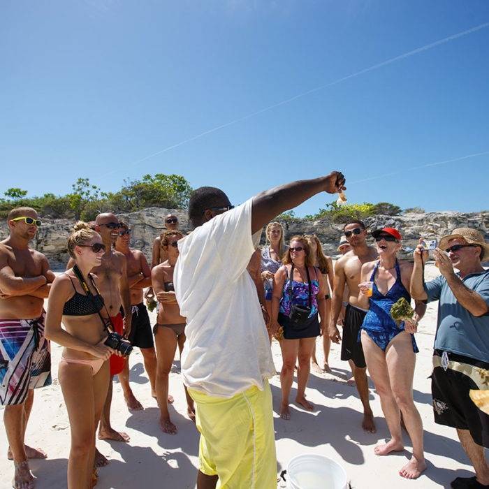 Shell hunting on Turks and Caicos Island tour