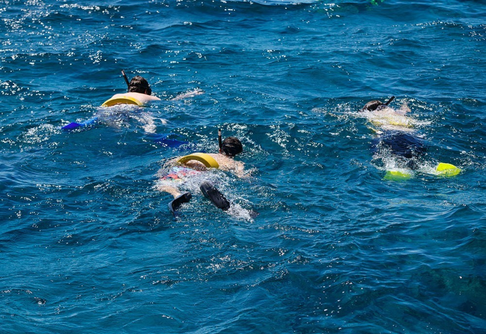kids snorkeling in turks and caicos